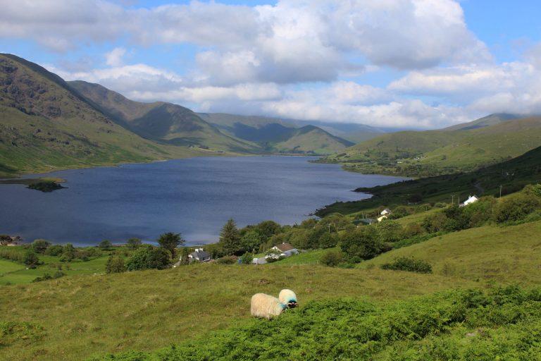 Irland (5)