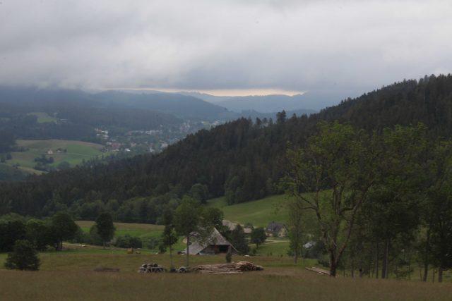 Blog_Wildnisvertiefung_Chevre_Miel (28)